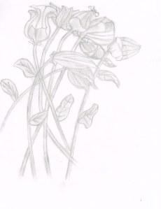 Flower Bud02132014