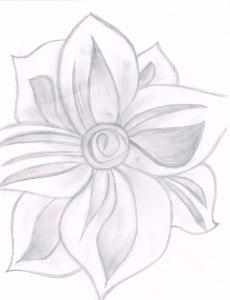 flower02122014