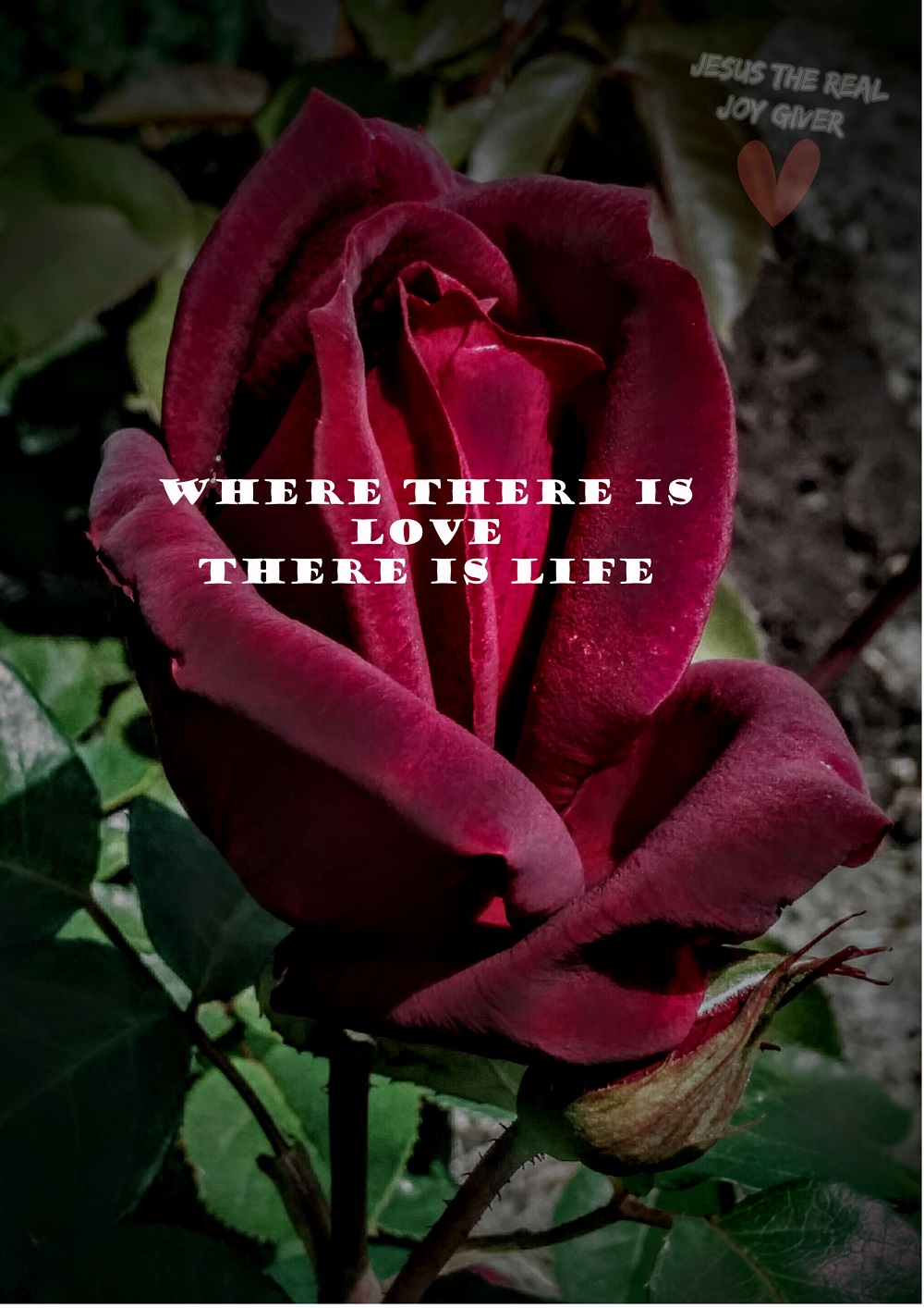 where is love there is life